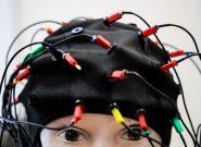 دوره ارشد علوم شناختی – روانشناختی ایجاد می شود